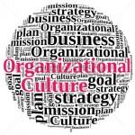 چگونه یک فرهنگ سازمانی با عملکرد بالا ایجاد کنیم؟ (قسمت اول)